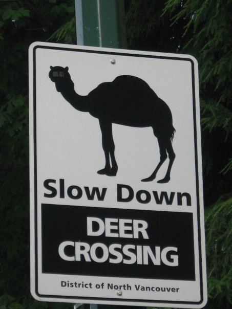 Funny Signs-North Vancouver, Canada