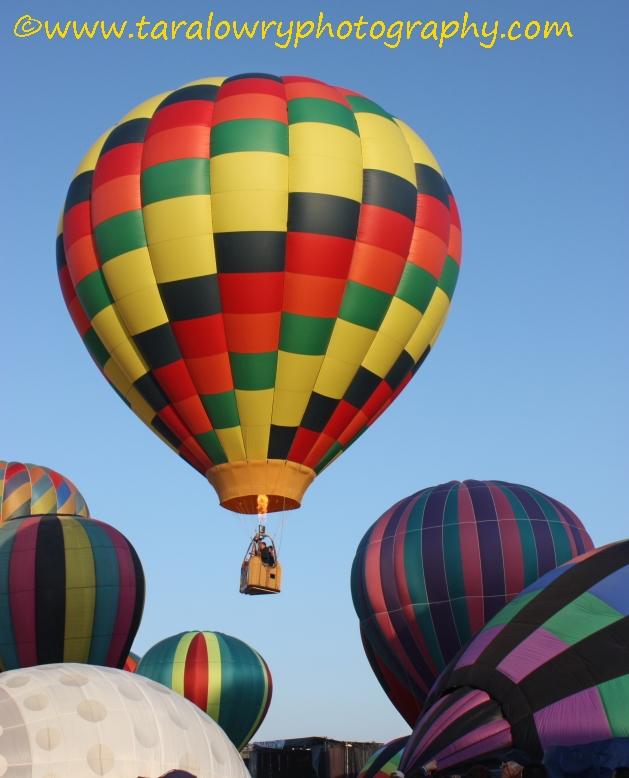 balloonssmalls0019signed