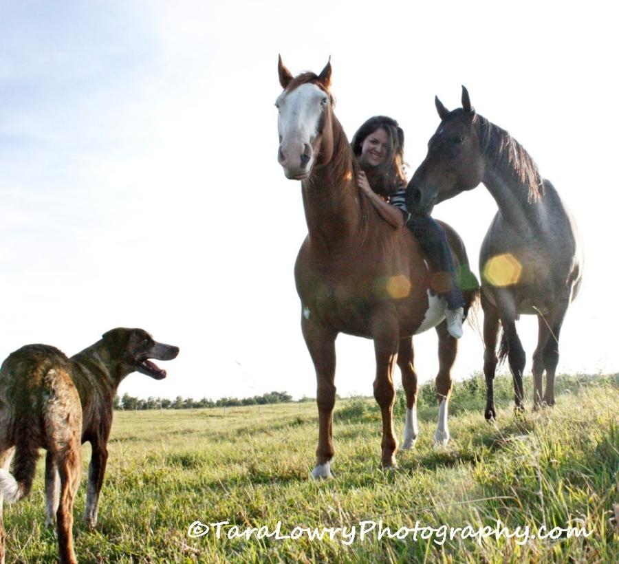 horsesnmesigned