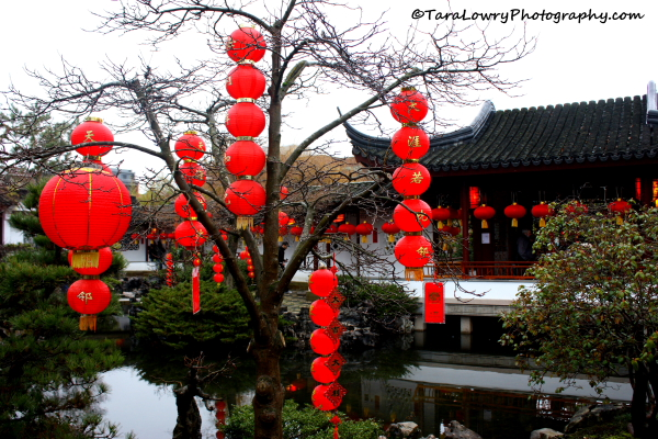 Lucky red lanterns in Dr. Sun Yat -Sen Gardens. Vancouver, Canada